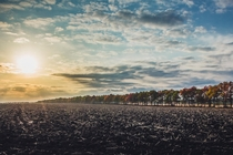 Sunset over a plowed field Sokolovo Ukraine