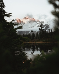 Sunset over Mt Shuksan at picture lake
