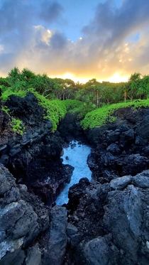 Sunsets blowholes and native hala forests at Waianapanapa State Park Maui HI