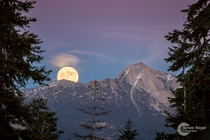 Super Moonrise from Badger Summit Meadow in Yosemite CA