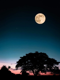 Supermoon seen from Ituiutaba Brazil