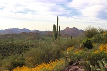 Superstition Wilderness Arizona