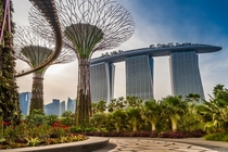 Supertree Grove Singapore