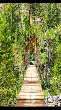 Suspension bridge over Wood Creek on John Muir Trail