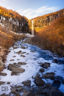 Svartifoss in the Wintertime A waterfall whos name sounds as geometric as the rocky cliffs of southern Iceland that created it  - IG BersonPhotos