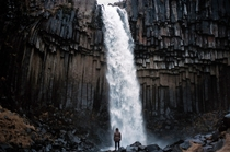 Svartifoss in Vatnajkull national park Iceland  - All credit goes to Kristina Petroiut