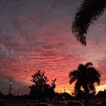 Sw Florida sunset Cape Coral