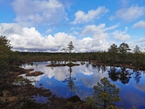 Swamps in Viru Raba Park Estonia Amazing reflective waters