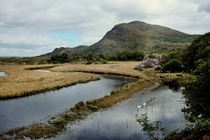 Swan Lake Co Kerry Ireland