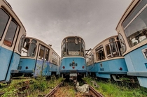 Symmetrical Cemetery of Abandoned Tramcars