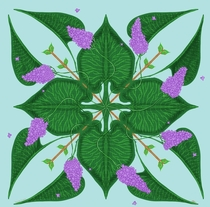 Syringa Vulgaris  I am working on some stylised botanical designs for tiles and fabrics this is my take on lilac
