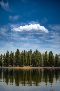 Tahoe National Forest CA -