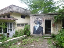 taken at an unused ashram in Rishikesh India known as the beatles ashram because the beatles stayed there for several months in the late s on a spiritual retreat i have more pics i can post upon request