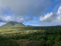 Taken in the highlands of Floreana Island in the Galpagos