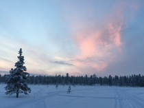 Taken on a snowmobile safari in Finland