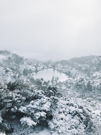 Taken today in Cradle Mountain Tasmania Hope the north is enjoying the summer weather Image from raustralia