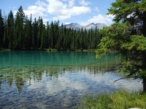 Taken while hiking around Beauvert Lake in Jasper Alberta