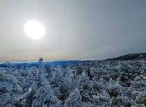 Taken yesterday morning on the ridge between Mt Pierce and Mt Eisenhower White Mountains NH  x