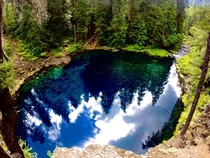 Tamolich Pool Oregon