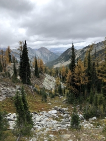 Tanglefoot pass on the Rocky Mountains in southeast British Columbia