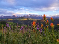 Telluride CO during the summertime