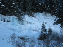 Telluride Falls Frozen in the Shade of the Mountain Jan