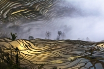 Terraced rice fields in the village of Bada Yuanyang County China