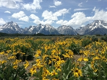 Teton Mountain Range Wyoming USA