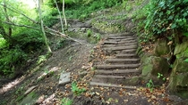 th Century old steps in the woods Cheshire UK OC x