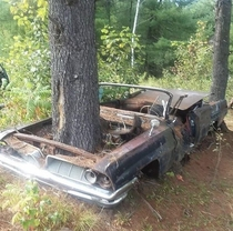 That might be tough to get out of someone would want to restore it