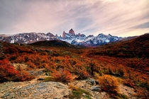 thats how autumn in patagonia looks like