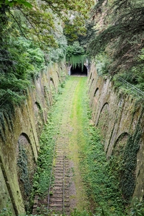 The abandoned Petite Ceinture railway line Little Belt railway passing through the parc Montsouris