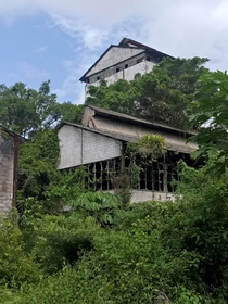 The abandoned rum factory with a dark past in Marienburg Suriname
