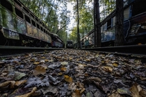 The Abandoned trolley cars