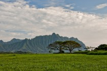 The ahupuaa of Kualoa Oahu Hawaii  OC