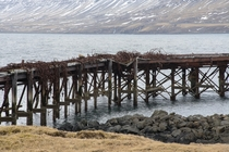 The Allies used this harbour in Hvalfjrur Iceland as a secret base during WWII This is remnants of the train tracks that used to run here  by Andrew Sommerfield