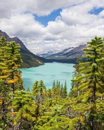 The amazing color of glacial waters Alberta Canada  ig-natureprofessor