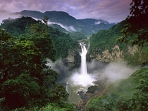 The Amazon Rainforest Venezuela