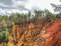 The aptly named Red Buffs in Mississippi aka the Grand Canyon of Mississippi aka the only canyon of Mississippi
