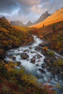 The arctic of northern Alaska offers one of the best fall color displays anywhere on Earth The diversity of color is incredible - greens yellows oranges and reds The mountains arent too bad to look at either Gates of the Arctic NP Alaska  mattymeis