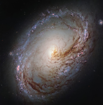 The asymmetrical core and inner spiral arm of Messier  bursting with star formation and dark dust lanes in the constellation Leo  million light-years away  image credit NASAESA Hubble