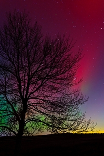 The Aurora Borealis Photo by Andrew Cameron