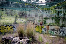 The back of an abandoned lion enclosure in Cape Town South Africa
