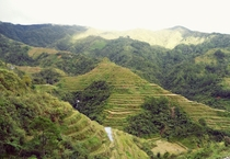 The Banaue Rice Terraces of Ifugao  x-post rPhilippinesPics