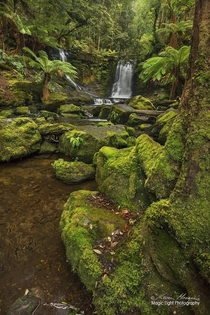 The beautiful and serene Horseshoe Falls in Mt Field National Park in Tasmania Australia