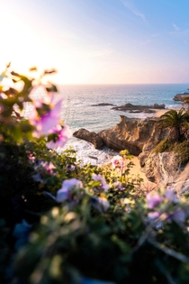 The beautiful covers of Laguna Beach CA