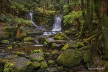 The beautiful Horseshoe Falls in Mt Field National Park in Tasmania Australia