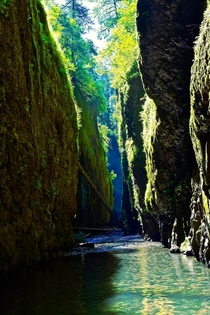 The beautiful Oneonta Gorge Oregon