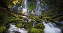 The beautiful Proxy Falls of Central Oregon