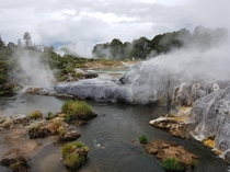 The beautiful Whakarewarewa Geysers in Roturua New Zealand